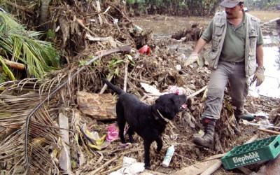 Inzet in Sri Lanka en Thailand na de Tsunami