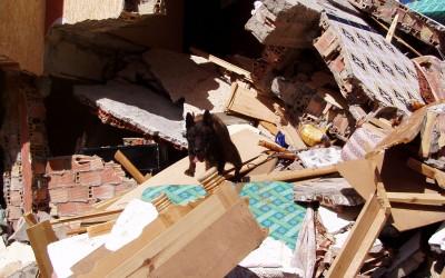 Inzet na de aardbeving in Marokko 2004