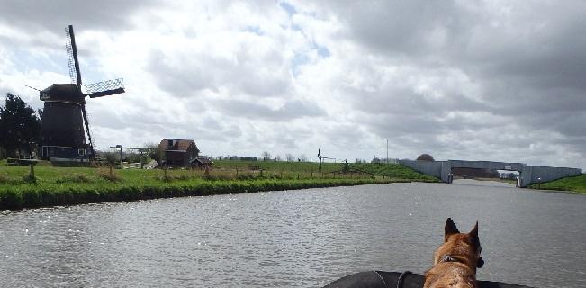 Vermissing Nieuwe Niedorp! (8 april- 3 augustus 2015)