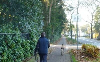 Vermissing Eindhoven (4 november 2-14- 21 januari 2015)