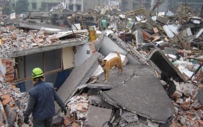 Inzet na de aardbeving in China (12 mei 2008)