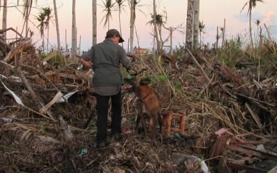 Inzet na de Typhoon Haiyan in de Filipijnen 2013