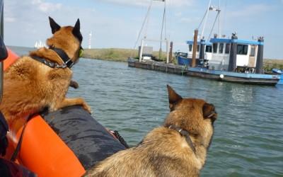 Vermissing IJsselmeer (22 februari 2012- 22 maart 2012)