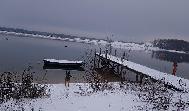Training 'dood' zoeken onder winterse omstandigheden