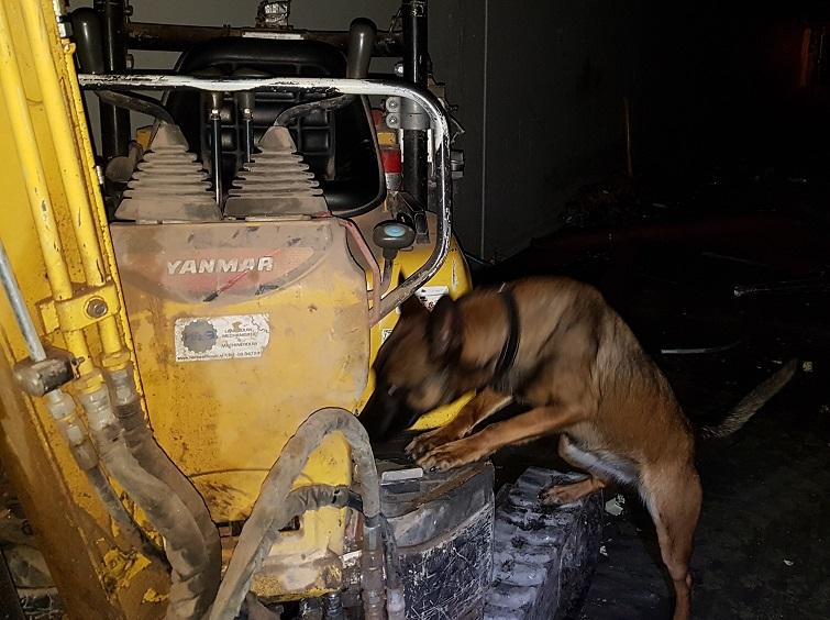 Training 'lijkenhonden'