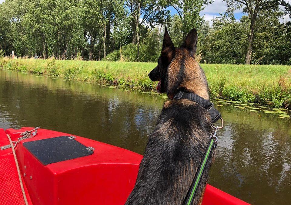 Zoekactie Noord Nederland