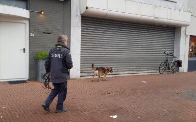 Vermissing Utrecht (3-4 januari 2020)