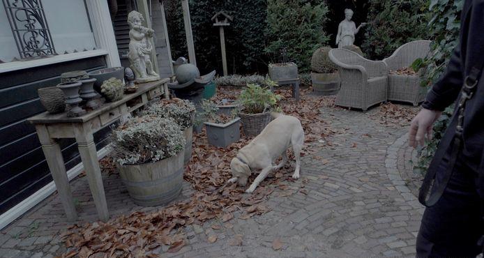 Onderzoek woning door zoekhonden